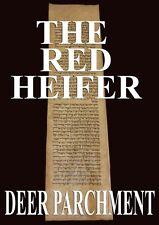 "TORAH BIBLE VELLUM MANUSCRIPT LEAF 250 YRS ""HALAB""  SYRIA Numbers 18:21-19:12"