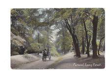 Vintage postcard Fairmead, Epping Forest, Essex. Machine 6 line cancel 1907