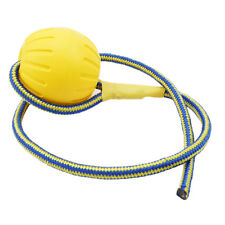 Pet Dog/Puppy Play Rope Ball Throw Pet Toy Fetch Chew Bite Training Outdoor G