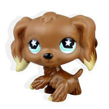 New #960 Littlest Pet Shop RARE Chocolate Brown Cocker Spaniel Dog Star Eyes LPS