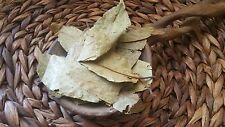 50 g - FRESH CHALIPONGA  Dried  100% ORGANIC