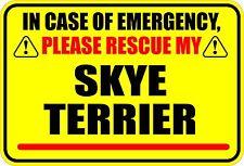 In Case Of Emergency Rescue My Skye Terrier Dog Sticker