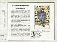 Foglio CEF 1er Giorno Sul Seta Francia Marziale Di Nostri Regioni il Falco 1984