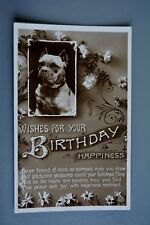 R&L Postcard:  Birthday Happiness Greatings, Bull Mastiff Terrier Boxer Type Dog