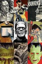 Frankenstein: A Cultural History, Very Good Condition Book, Hitchcock, Susan Tyl