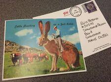Shawshank Redemption Postcard Replica
