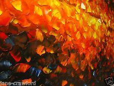 "47"" x 32""  Large Art  Abstract  aboriginal Bush fire Australia Oil Canvas COA"