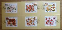 Briefmarken Maximumkarten Angemessen Ddr 2737-2742 Mk Halbamtliche Maximumkarten Veb Wermsdorf Herbstblumen 1982