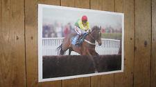 Nouvelle annonce Le calibrage de l'Europe Horse Racing Legend New Jump Poster