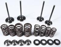 KPMI INTAKE//EXHAUST VALVE GUIDE BRONZE Honda XR600R,XL600R,XR500R,XR650L Fits