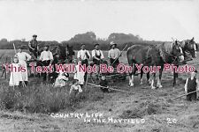 OX 159 - Country Life, In The Hay Field, Oxfordshire - 6x4 Photo