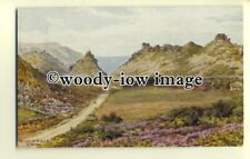 ar0296 - The Valley of Rocks, at Lynton *2092. Artist - A R Quinton - Postcard