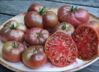 Tomate  tradicional cherokee  variedad muy antigua   semillas -  seeds huerto