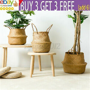 Foldable Seagrass Woven Storage Belly Basket Laundry Hamper Pot Plant Flowra