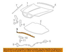 NEW OEM Ford Hood Weatherstrip Seal Front XW4Z-16A238-AA Lincoln LS 2000-2006