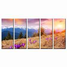 Framed Large Landscape Photo Canvas Print Hill Sunrise Wall Art Painting-5pcs
