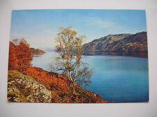 Loch Ness. Near Fort Augustus, Invermoriston, Foyers, Drumnadrochit etc.