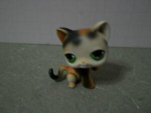 Littlest Pet Shop Calico Cat Paw Up Black & Orange Green Eyes #27 LPS
