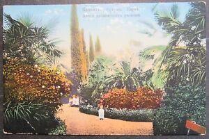 Russia Postcard, Caucasus, Sukhumi, Park