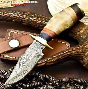 Rare Custom Hand Made Damascus Steel Blade Hunting Miniature Knife| Ram's Horn