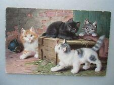 Ansichtskarte Katzen 1909