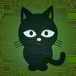 Brise CAT (Computer and Technology)