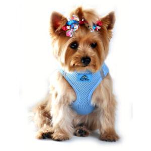 American River Light Blue Dog Harness Ultra Choke-Free Mesh  - XXS-3XL
