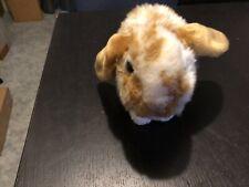 Webkinz Signature Lop Bunny (No Code)