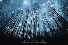 IMAGINATION - TREES & STARS INSPIRATIONAL POSTER - 24x36 SPACE 0858