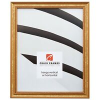 Craig Frames Stratton, 14x20 0.75 Inch Wide Traditional Aged Gold Picture Frame