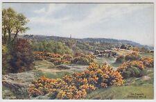 POSTCARD - A. R. Quinton (ARQ) *1213 - The Common, Tunbridge Wells, Kent
