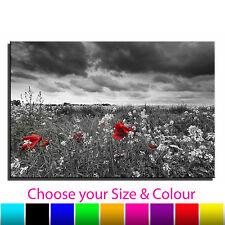 Poppy Landscape Floral Single Canvas Wall Art Picture Print 13