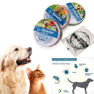 Dog Cat Flea And Tick Repellent 8 Month Protection For Dogs & Cats Rubber Collar