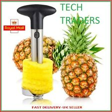 New Stainless Steel Fruit Pineapple Slicer Corer Cutter Peeler Kitchen