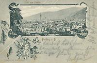 Ansichtskarte Freiburg i.B. Total vom Loretto1902  (Nr.793)