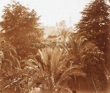 Cannes vue de Villa Marthe France Plaque M2 Stereo Vintage Positif 6x13cm