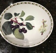 """Queens Fine Bone China Hookers Fruit Cereal/Soup bowl 6 1/8"""" Royal Horticultural"""