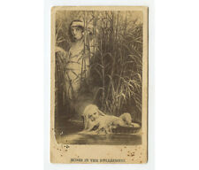 MOSES IN THE BULRUSHES, BABY IN BASKET/WATER/BAMBOO REEDS, CDV