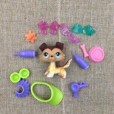 Littlest Pet Shop Toy LPS #58 3PCS Hasbro Gift Puppy Kid Brown Collie Dog