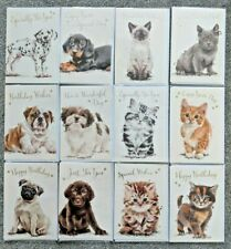 PACK OF 12 Birthday Cards - Cats & Dog Animals - Men Female Multi Pack Art