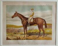 1885 Antique Horse Racing Print HARVESTER Derby Paine Stakes Newmarket S. Loates