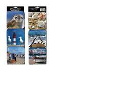 Untersetzer See Motive 6er Set Robbe Möwe Leuchtturm Schiff Muscheln Meer