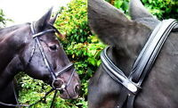 FSS German Posh Padded POLL Comfort Caveson Combined Flash Bridle Dressage Reins