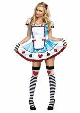Dreamgirl Fancy Dress Wonderland Costume, Dress, Gloves and Hairband, Size L, 14