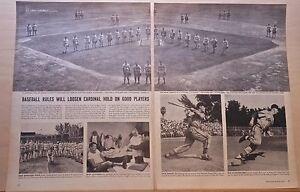 1956 magazine article - St. Louis Cardinals Surplus of Crack Players, Favorites