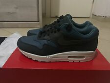 NIKE NIKELAB AIR MAX 1 PINNACLE ICED JADE SZ 9.5