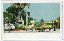 Arbol de la Noche Triste Mexico 1907c postcard