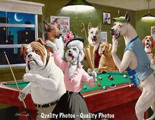 "Bulldog Caught Playing Pool 8.5x11"" Photo Print Arthur Sarnoff Funny Dog Artwork"