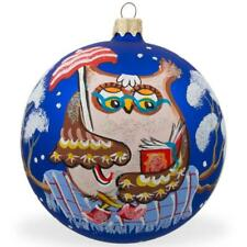 Owl Reading Book- Bird Glass Ball Christmas Ornament 4 Inches