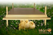 Brooder Hen 40x50 45w Electric Brooder Poultry Heat Lamp Anti-Microbial Plastic